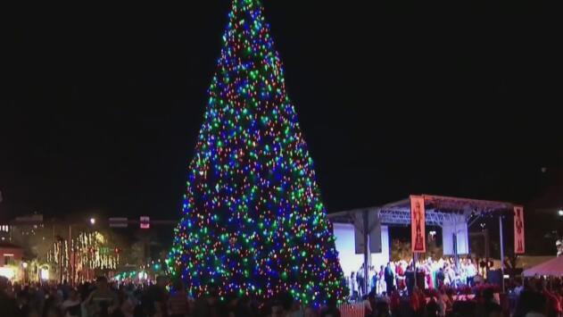 En medio de un gran despliegue policial, iluminan el árbol de Navidad de Coral Gables