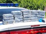 Un hombre buscaba tortugas y encontró un cargamento de cocaína valuado en 1.2 millones de dólares