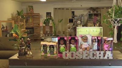 Una organización del Valle recolecta muñecas en protesta por un presunto caso de abuso de autoridad