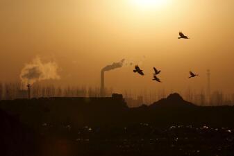 En fotos: Estas son las 20 empresas de hicrocarburos que más contaminan (tres son latinoamericanas)