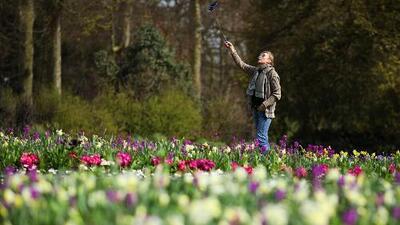 Por qué dicen que nos sentimos más enérgicos con la llegada de la primavera