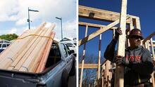 """""""Podría causar fallas catastróficas"""": emiten alerta sobre uso de la madera europea en Carolina del Norte"""
