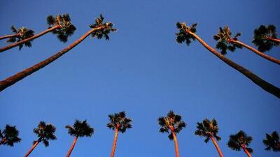 Cielos parcialmente soleados y ligera posibilidad de lluvia para este domingo en Los Ángeles