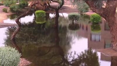 ¿A dónde va el agua al terminar la temporada del monzón en Arizona?