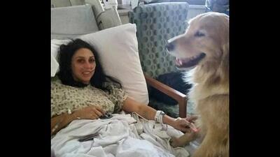 Perros terapeutas reconfortan a las víctimas de la masacre en Las Vegas