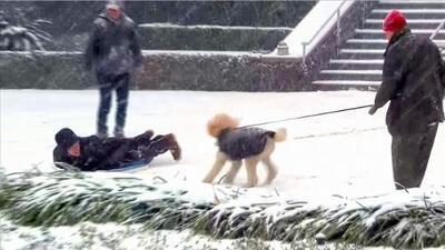 A riesgo de congelarse, estadounidenses se divierten con la nieve que deja la 'bomba meteorológica'