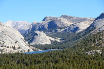 Explorando el Parque Nacional Yosemite