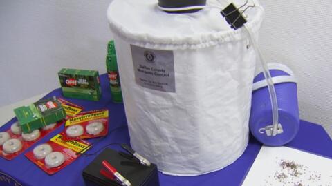 Departamento de Salud de Dallas revelará plan de contingencia para el control de mosquitos