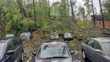 Un muerto, árboles caídos, autos dañados y fallas eléctricas: Tormenta deja caos en varios sectores en metro Atlanta