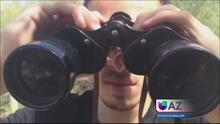 """Reportaje Especial """"Los ojos de los Carteles"""""""