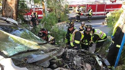 Rescatan a conductor de un automóvil que quedó incrustado en un árbol en Mountain View