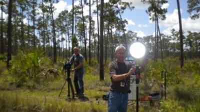 Everglades: Aventura y Diversión
