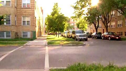 El cadáver de un perro tirado en la calle indigna a la comunidad de Chicago Lawn