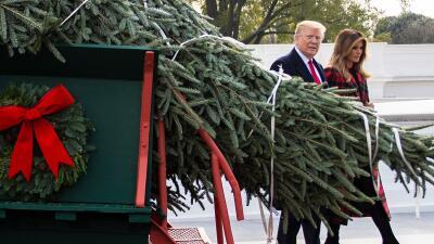Comienza la Navidad en la Casa Blanca: así fue la llegada del árbol de los Trump (fotos)