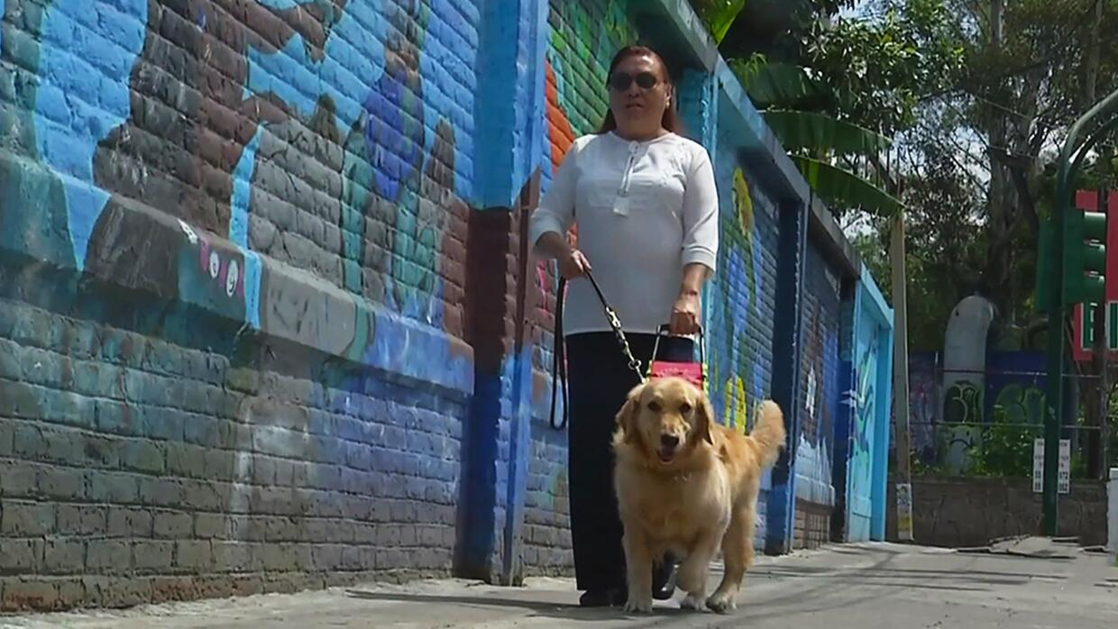 Visually impaired woman brings hope to others with guide dogs