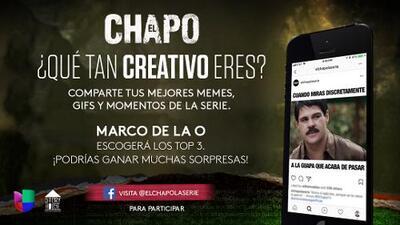Official Rules 'El Chapo': Concurso de Memes