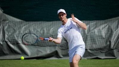 Andy Murray jugará dobles con su hermano Jamie