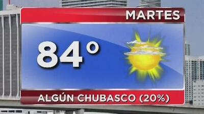 Cielo mayormente despejado y temperaturas cálidas para este martes en Miami