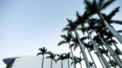 Miami tendrá un viernes frío con brisa y oleaje peligroso, pero sin lluvias