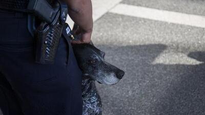 Pese a no existir amenazas, la seguridad en Los Ángeles está en alerta tras explosión en Nueva York