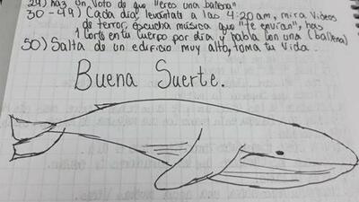 ¿Qué es juego de la 'ballena azul', la macabra moda que puede estar detrás de suicidios de jóvenes en América Latina?