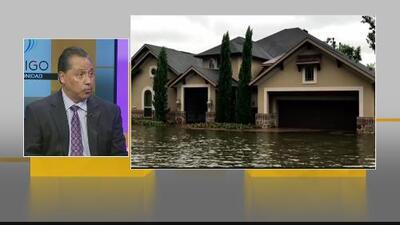 Servicios para residentes de Houston que sufrieron los efectos del huracán Harvey