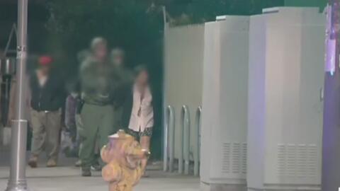 Reporte de violencia doméstica lleva a la Policía de Redwood City a rescatar a una mujer siendo obligada a prostituirse