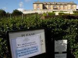 Después de los incendios, la explosión del coronavirus propina otro golpe a los viñedos y negocios de Napa