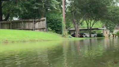 El condado de Wharton es uno de los más afectados por el mal tiempo: al menos diez casas sufren inundaciones menores
