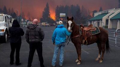 Así es el paso destructor de los incendios al norte de California