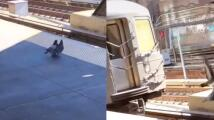 Pájaros asesinos: dos palomas empujan a una tercera hacia las vías del subway de NYC