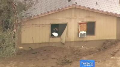 Inundaciones causan caos en Phoenix, Arizona