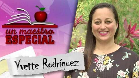 Un Maestro Especial 2017: Yvette Rodriguez