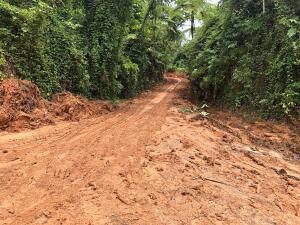 En fotos: Esta carretera quedó cubierta en lodo tras las fuertes lluvias registradas en la Isla