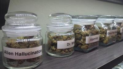 Arizona y California deciden en noviembre legalidad de marihuana recreativa