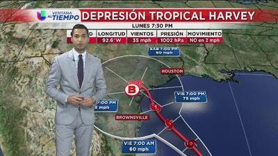 La ruta que puede estar tomando la depresión tropical Harvey