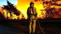 Incendios y árboles caídos, algunos estragos de los vientos de Santa Ana en el condado de Los Ángeles