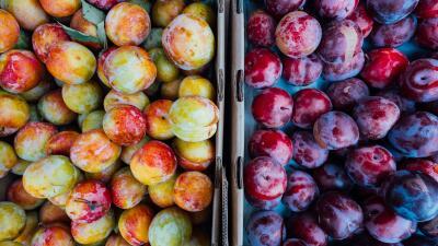 10 mercados de granjeros para visitar este verano en el área de Chicago