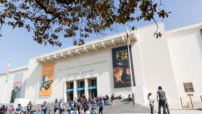 Top 5: Museos para visitar en Los Angeles, California