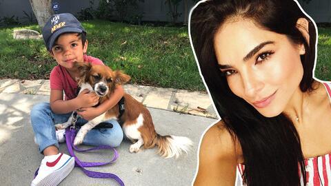 Matteo levanta sospechas de que Alejandra Espinoza podría estar embarazada