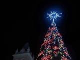 Municipio de Humacao anuncia programa de reciclaje de árboles de Navidad