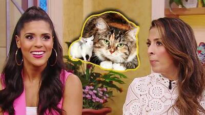 Al gato y al ratón: Francisca y Maity no quieren saber nada (ni estar cerca) de estos animales