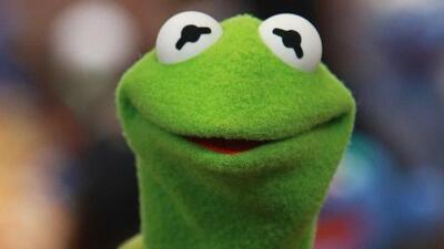 Kermit the Frog habló sin pelos en la lengua