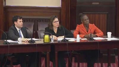 Primera dama de Nueva York testifica ante Concejo Municipal por cuestionamientos a programa de salud mental 'Thrive NYC'
