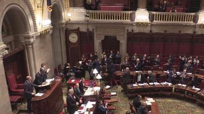 El DREAM Act José Peralta de Nueva York fue aprobado este miércoles por el Senado del estado