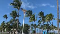 Se espera que el huracán Dorian podría alcanzar Florida el próximo lunes