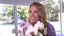 Ponte Bella con Ximena: El mejor consejo para cuidar tus orquídeas