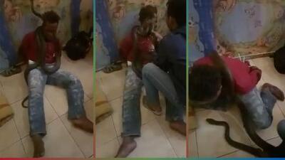(Video) Indignante: Policía de Indonesia usa serpiente para intimidar a un ladrón y hacerlo confesar