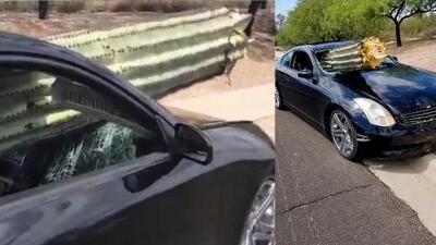 Hombre sale ileso de accidente con cactus que atravesó su auto