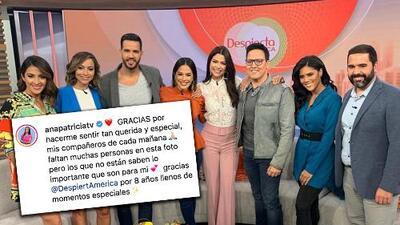 Ana Patricia Gámez deja Despierta América y se dedicará a 'buscar el amor'